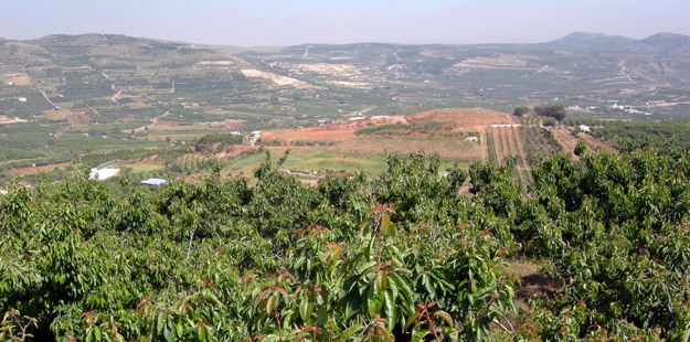 One of the cultivated valleys near Majdal Shams.
