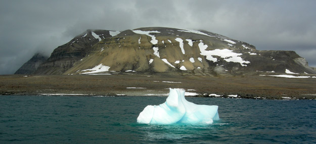 Iceberg from the Tunabreen Glacier at the proximal end of Tempelfjord.