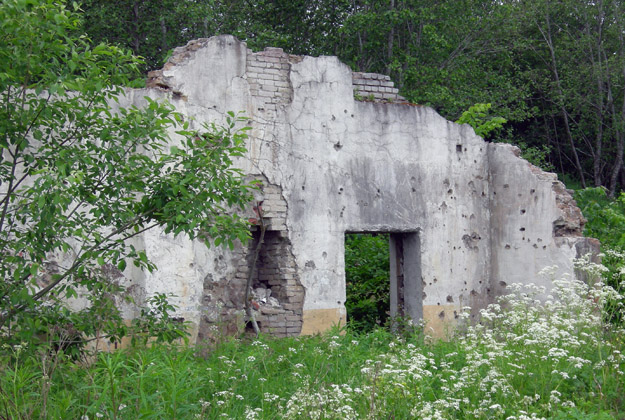 Building remnants near the Putilovo Quarry, Leningrad Region.