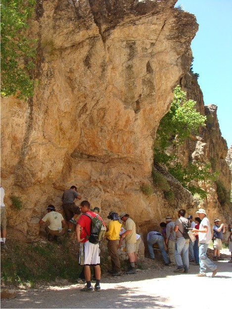 The Wooster and OSU gang looks at some of the rocks exposed in the Pavant Range.