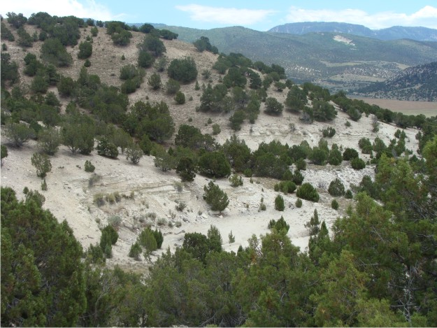 Here is a scenic view of a portion of White Hill that contains two quarries.  These quarries, although small, provided evidence of the shoreline of the Green River lake in this area.