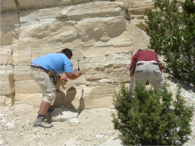 "The guys are busy trying to ""mine out"" a thin green tuff bed within the limestones of the Green River.  As Phil put it, finding this green tuff was ""money"", because it will help us correlate this quarry to other stratigraphic sections in the area."
