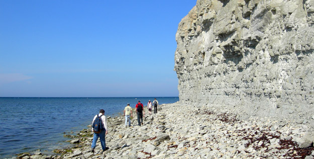The Estonia team at Panga Cliff on the northern coast of Saaremaa (N58.55321°, E22.28577°).  What a spectacular day it was.