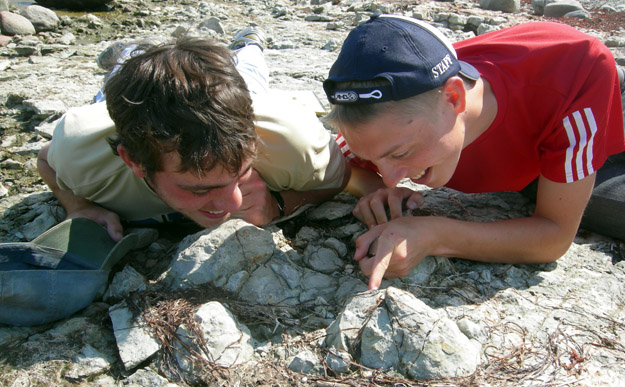 Rob and Palmer closely examine stromatoporoid fossils found in place at the foot of the Liiva Cliff on the northern coast of Saaremaa (N58.57553°, E22,36821°).