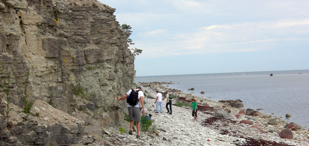Suuriku Cliff formed of Lower Silurian limestones and shales (N58.50681°, E22.00334°).  This coastline has been available to geologists for less than 20 years.