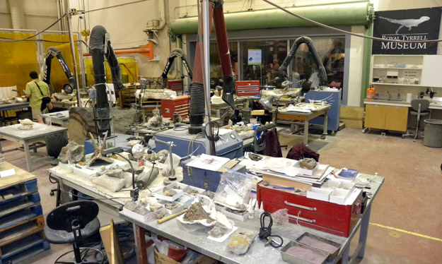 This is the main paleontological preparation lab at the museum.  It is filled with equipment designed for the most part to remove rock from bone.