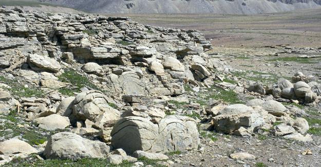 stromatoliteoutcrop080809