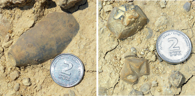 Crinoid calyx as found in the Matmor Formation (left); calyx fragments (right).  I use the two-shekel coin for scale because conveniently it is two centimeters in diameter!  Specimens found at N30.92907°, E34.97295°.