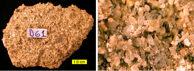 A sample of the same hardground as above with the organic material removed.  On the right is a closer view of the sand-sized grains making up the rock.  Notice that even in this view you can tell that the grains are poorly cemented to each other -- the rock is very crumbly.