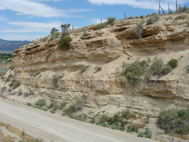 Above is a scenic photo of Gal Hill.  The thick, massive bed about 8-10 feet off the road is a air fall tuff.  The stromatolite layer that we targeted is immediately below the tuff.  Poor stromatolites...they never had a chance!!