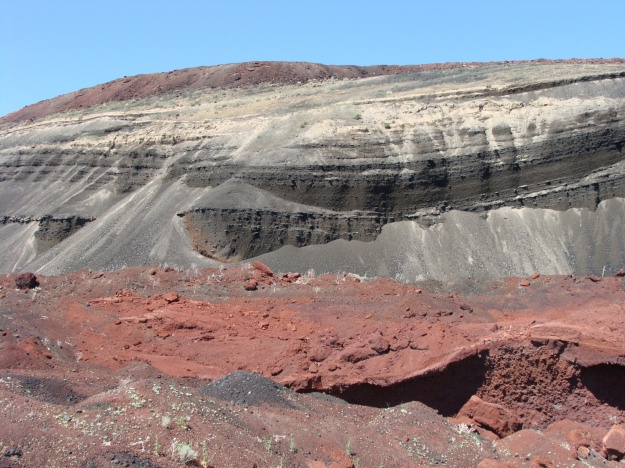 This is a photo of a cross-section through the Red Dome cinder cone, which is quarried for landscaping purposes.  Take a look at the pronounced bedding that is due to successive pulses of air-fall deposits.  We collected volcanic blocks and bombs both at the base of the cinder cone and then at the very top.