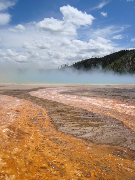 Fountain Paint-Pot, Yellowstone National Park, Wyoming.