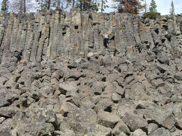 Take a look at Sheepeater Cliff, which is composed of basalts that exhibit columnar jointing.  Sheepeater Cliff is a result of the bimodal volcanism that was present in Yellowstone.