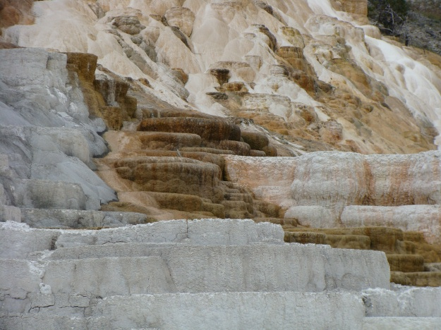 Mammoth Springs provided some wonderful exposures of travertine terraces, several of which were very active.