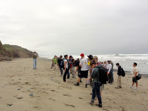 Keck Symposium participants at San Onofre Beach.