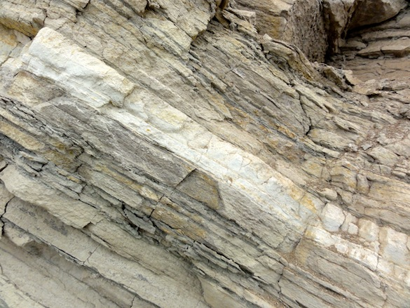 Tilted beds in a slump in the Monterey Formation. The white layer is a poorly lithified tuff. The width of the field of view is less than a meter.