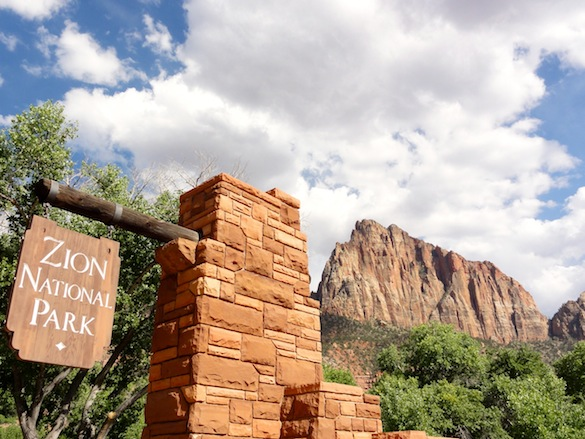 Zion is a geological wonderland, featuring striking sheer cliffs and narrow slot canyons.