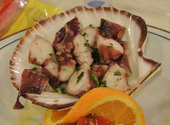 OctopusDinner585
