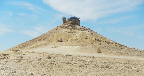 Mitzpe Ramon Camel 041414