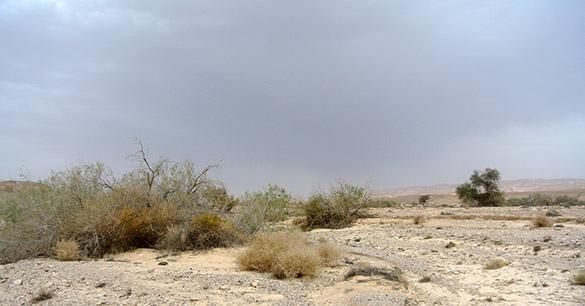 rainstorm 042014