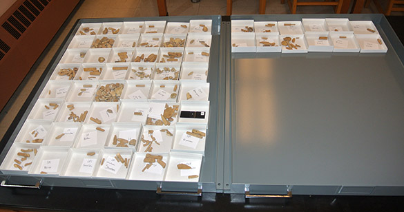 Israel specimens 050514