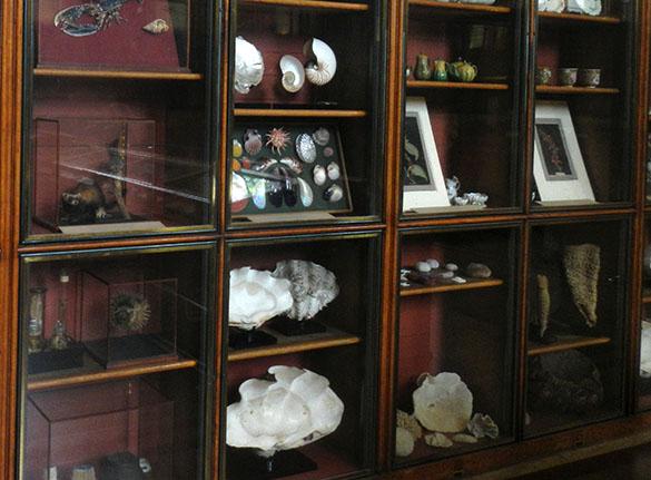 Enlightenment cabinet