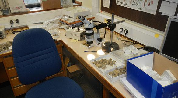 Lab desk 062314