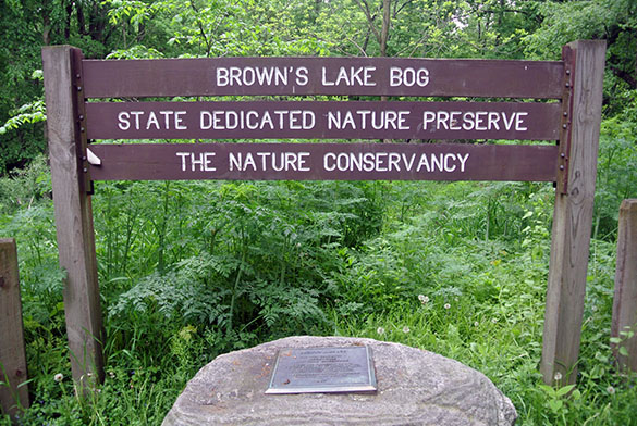 2 Brown's Lake Bog sign