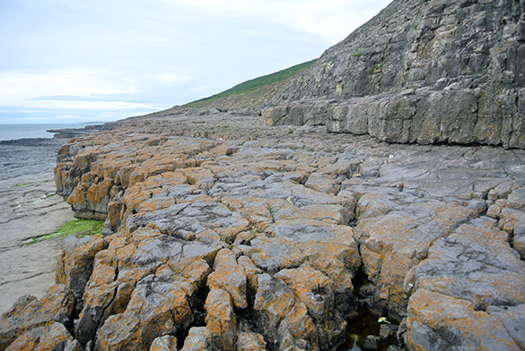 1 Dinantian Sutton unconformity wide view