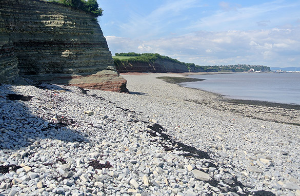 1 Triassic Lavernock Point Penarth Group