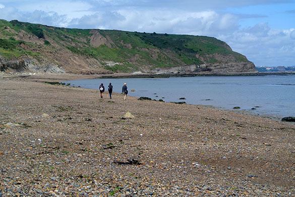 3 Gristhorpe Bay