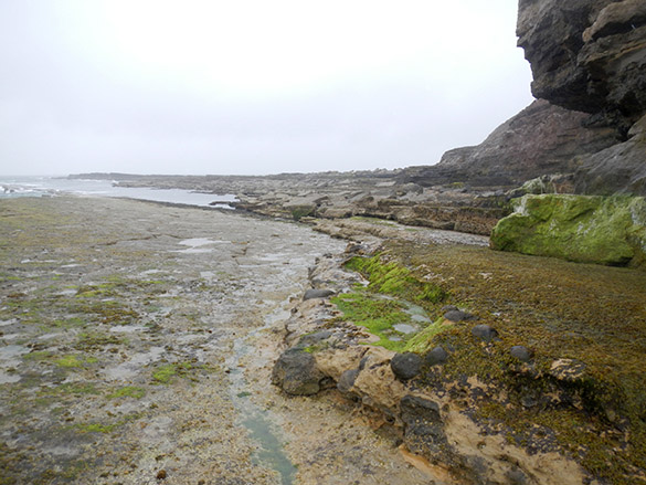 3 Low tide access Filey Brigg