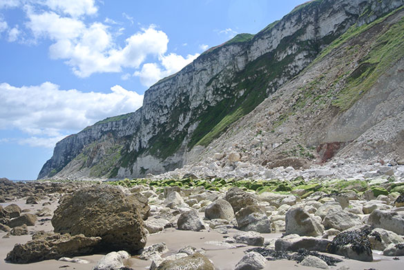 4 Chalk cliffs s Speeton