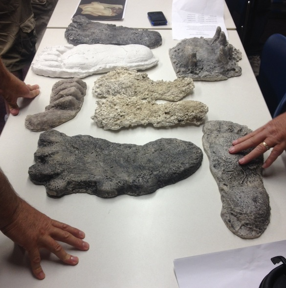3 Bigfoot footprint casts 082915