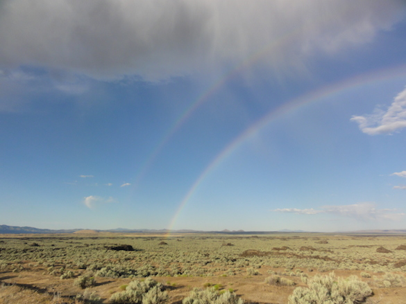 We were treated to a double rainbow over our field site after a light sprinkle in the desert.
