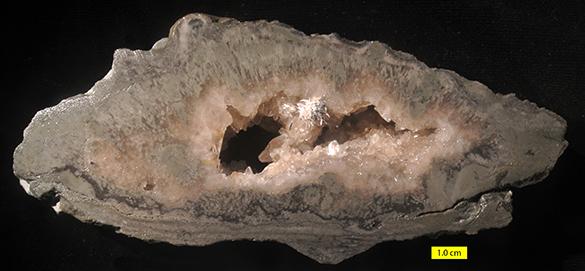 6 Tetradium cavern