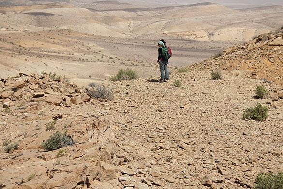 1 Yaels Makhtesh view 031416