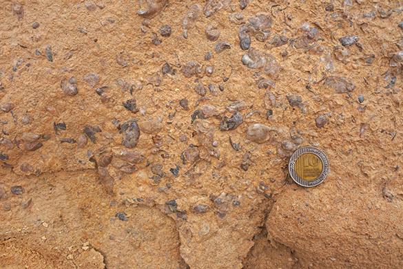 3 Ora limestone 031316