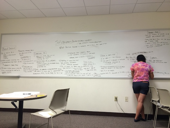 Amineh AlBashaireh ('18) filled the whiteboard with an impressive set of ideas and questions, which jump-started our research discussion.
