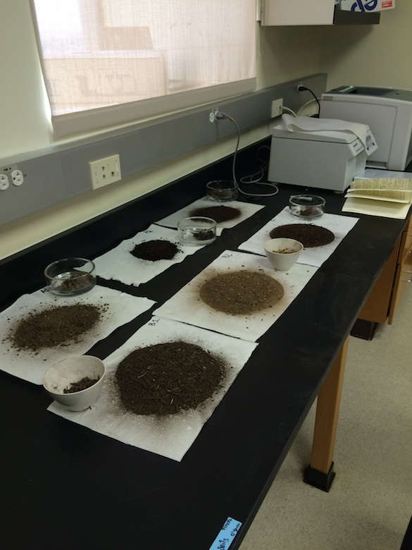 Her soil samples display variety of colors and compositions.