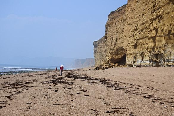 1 Burton Radstock cliff
