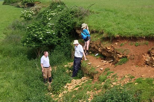 12 Louse Hill quarry