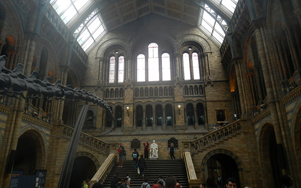 2 NHM cathedral of science
