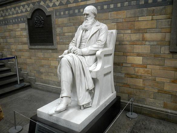 3 Darwin presiding