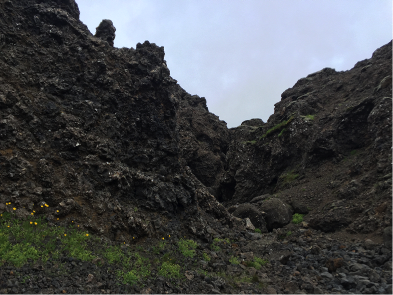 The gully we mapped. We discovered lots of fractured pillow lavas and dikes.