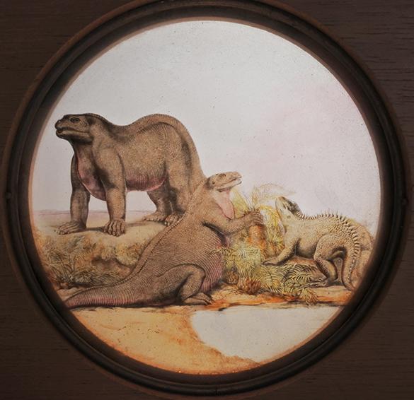 12-iguanodon-and-a-hyleosaurus