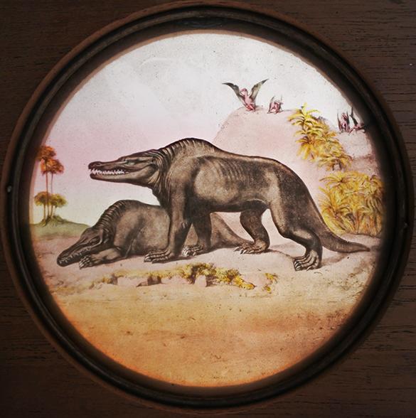 4-megalosaurus-pterodactyle